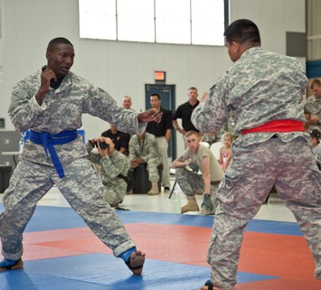 12_WONSA_2013_Combatives